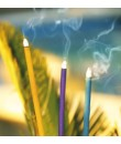 Encens aroma de PAPAIA de qualitat per a ús interior i exterior