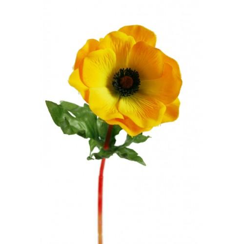"Flor ""Anemona Amarilla"""