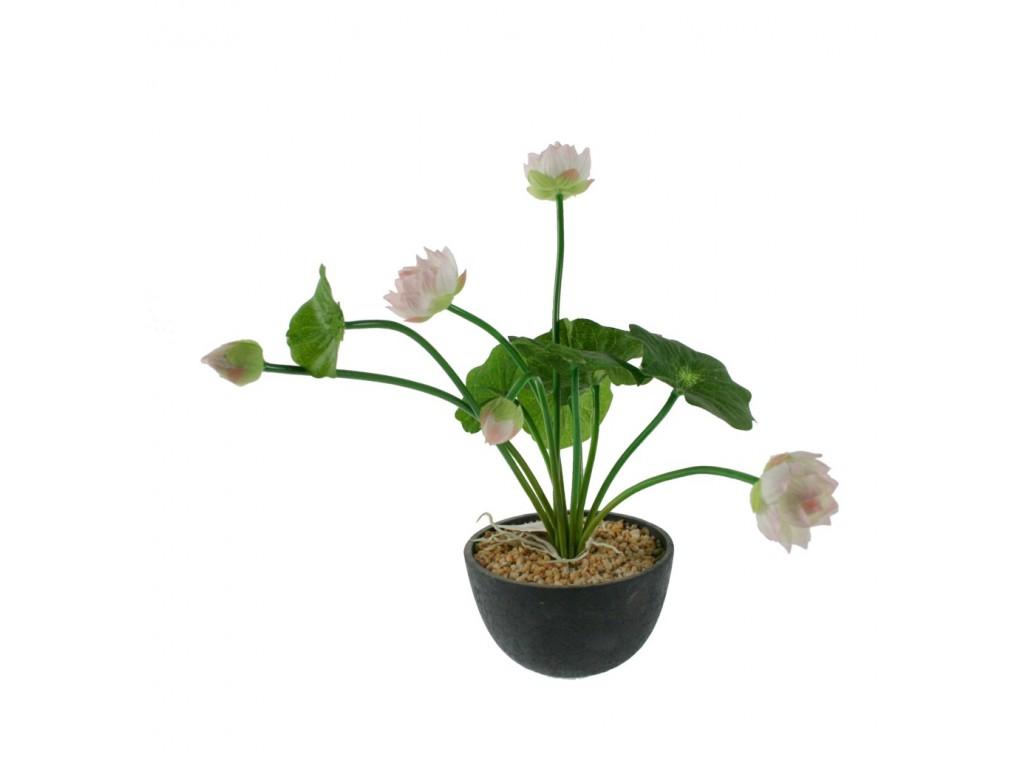 Maceta con flor blanca decoraci n hogar - Flores de maceta ...