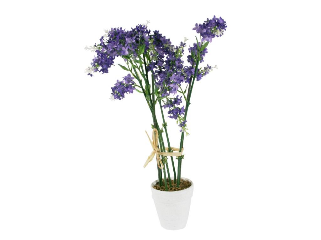 Maceta con flor lavanda decoraci n hogar - Flores de maceta ...