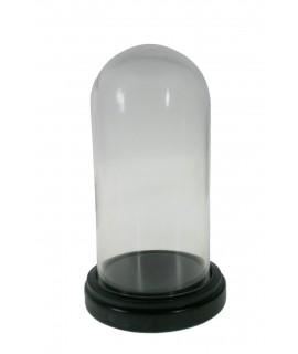 Cúpula campana de cristal con base madera. Medidas: 24x13 cm.