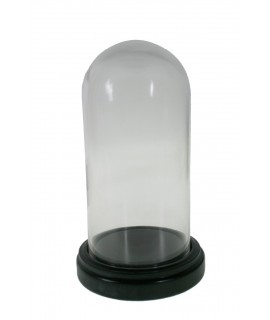 Cúpula campana de vidre