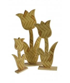 Tulipes de fusta