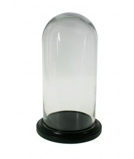 Campana de vidre 30 cm.