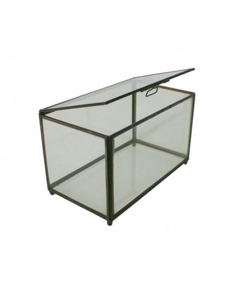 Caixa rectangular de vidre amb perfil metàl·lic. Mesures: 24x14 cm.